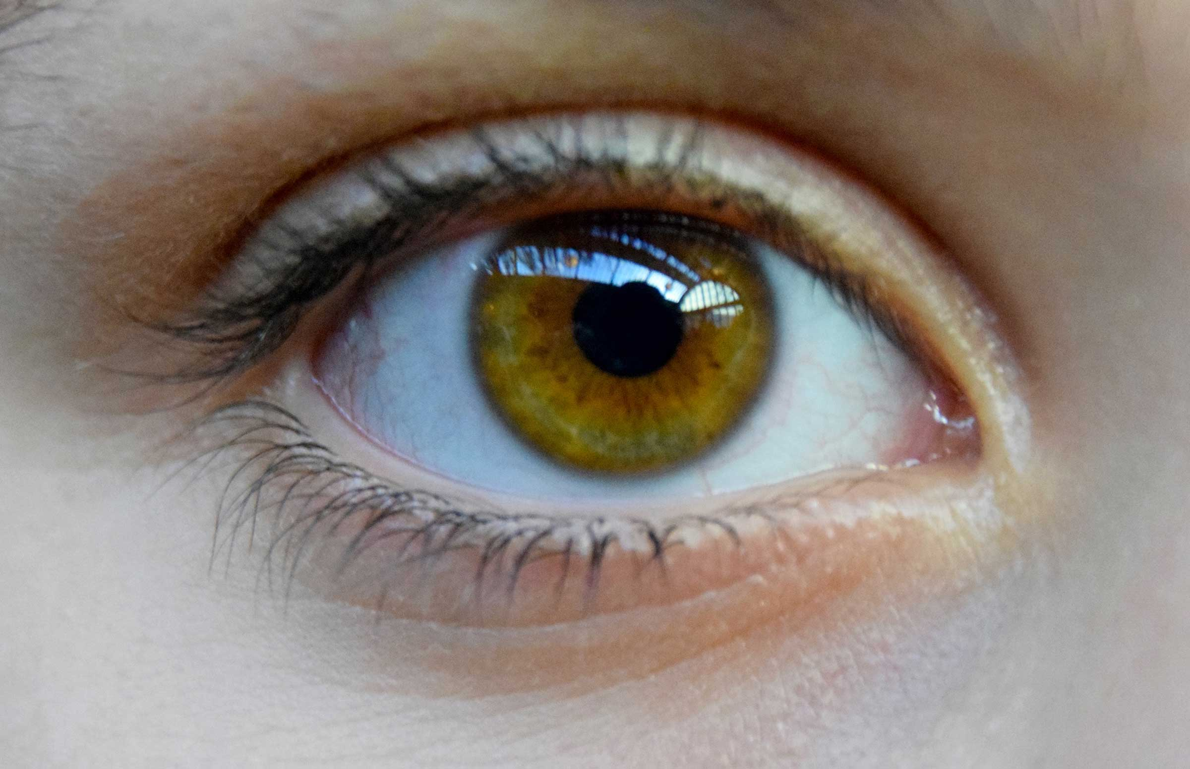 Closeup photo of golden brown eyeball.